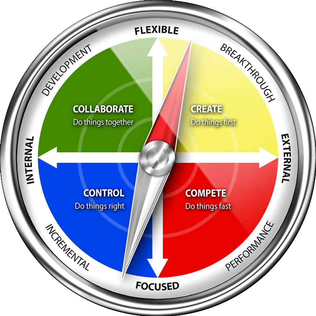 Systemic Culture Compass