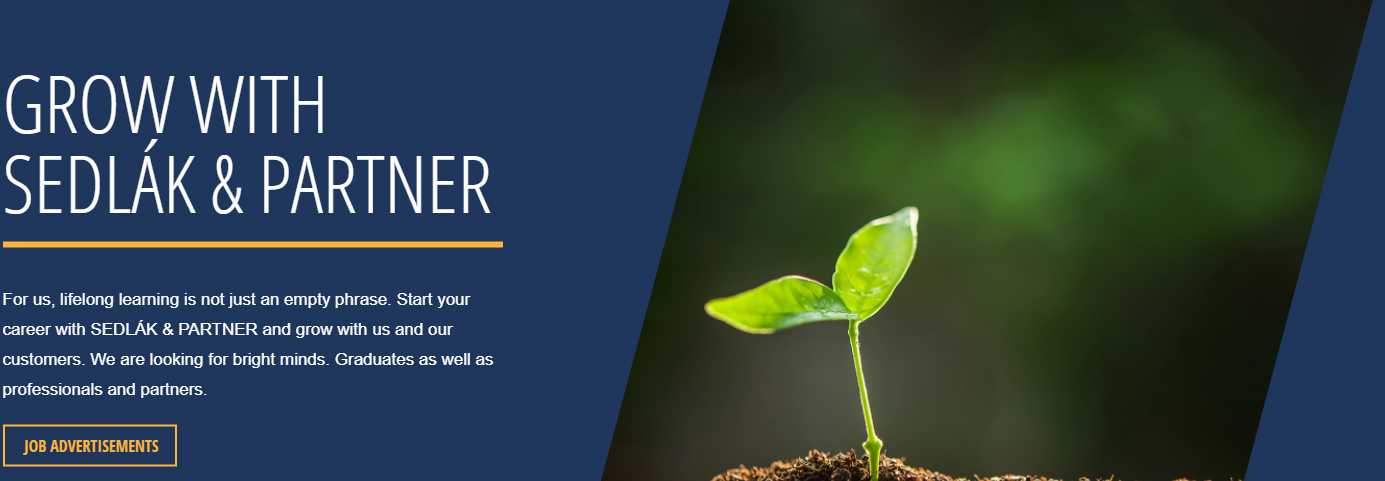 Grow with best consultancy